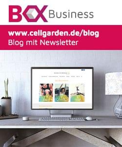 Desktop-Computer mit einer Webboxes-Business Website